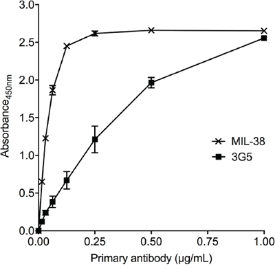 Recognition of recombinant human GPC-1 protein by MIL-38 and 3G5.