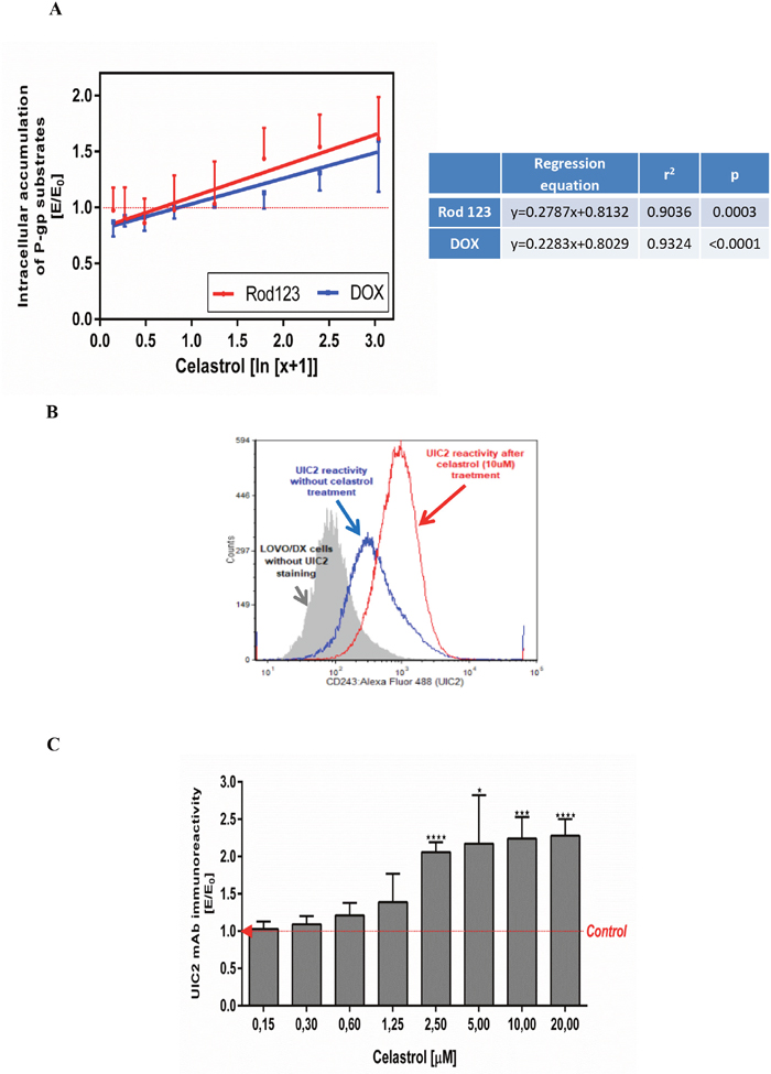 Influence of celastrol on P-gp structure and transport function in LOVO/DX cell cultures.