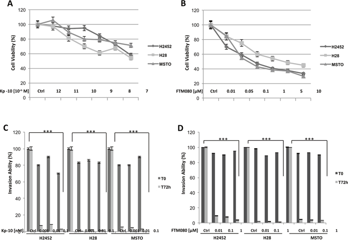 Effect of Kisspeptin and FTM080 on the proliferation and the invasiveness of mesothelioma cell lines.