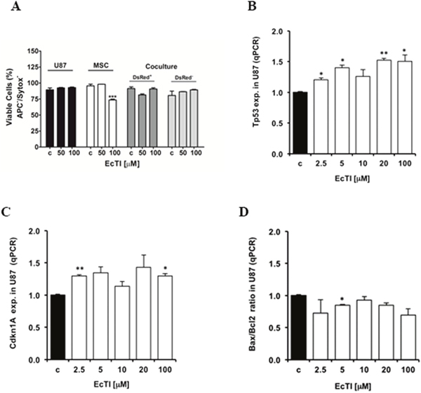 EcTI did not interfere in apoptosis.