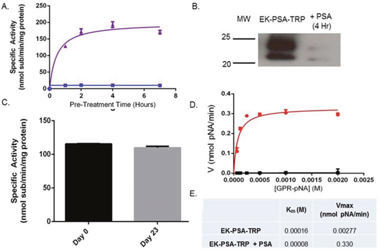 EK-PSA-TRP is a PSA-activated Trypsin mutant.