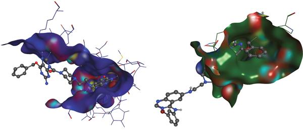 Molecular modeling of MR30.