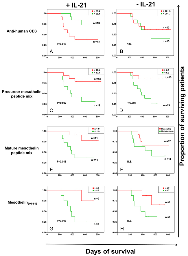 Kaplan-Meier survival analysis of patients with pancreatic cancer based on antigen-specific IFN-γ responses.