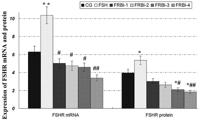 Expression levels of FSHR mRNA and protein.