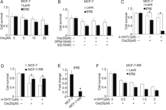 ERβ alters the chemosensitivity of breast cancer cells.