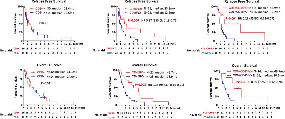 Kaplan–Meier analysis of relapse free survival and overall survival based on the presence of CD8, CD45RO or CD8CD45RO tumor infiltrating lymphocytes.