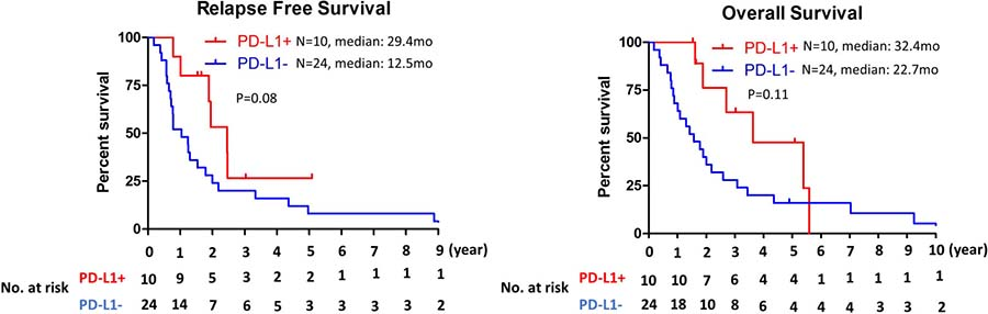 Kaplan–Meier analysis of relapse free survival and overall survival by PD-L1 expression status on tumor cells.