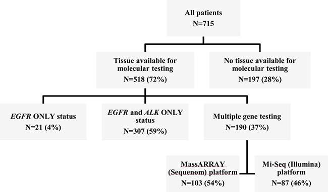 Summary of tumor tissue availability for genomic profiling.