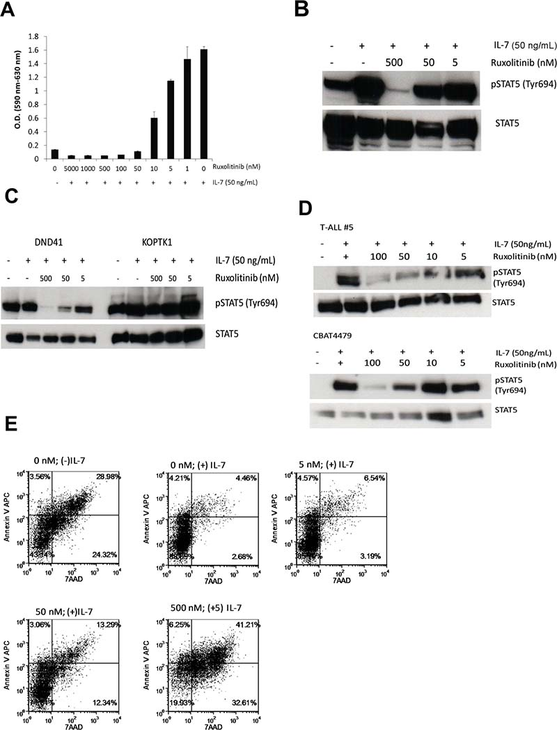 Ruxolitinib inhibits the proliferation and survival of D1_hIL7RP1 cells in vitro.