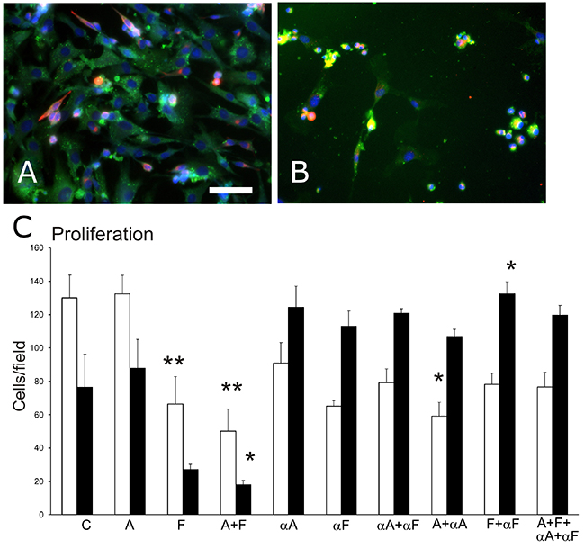 Cell density in primary muscle-derived cell cultures surviving after 48-hr treatments in culture.