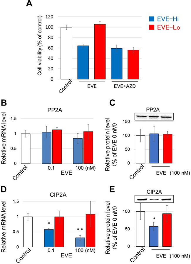 Effect of EVE on PP2A and CIP2A expression.