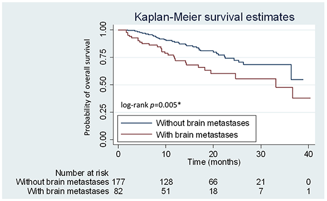 Kaplan–Meier curves for overall survival (OS) of patients with and without brain metastases.