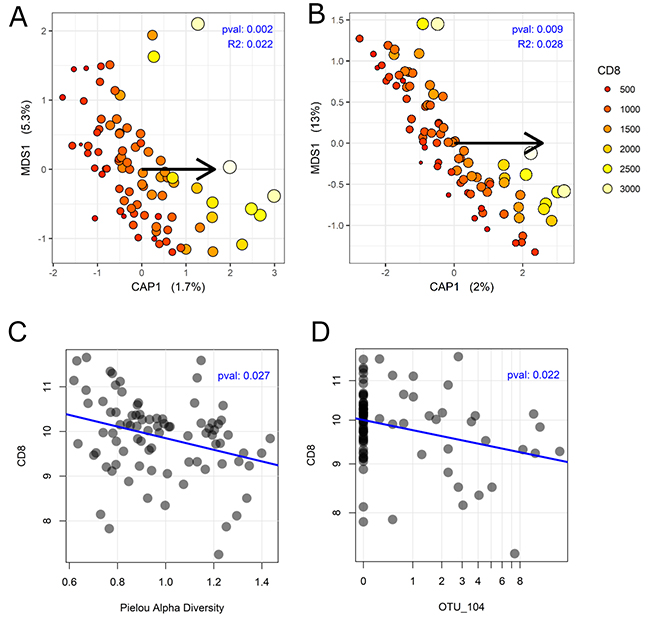 Association between colon cancer microbiome and CD8+.