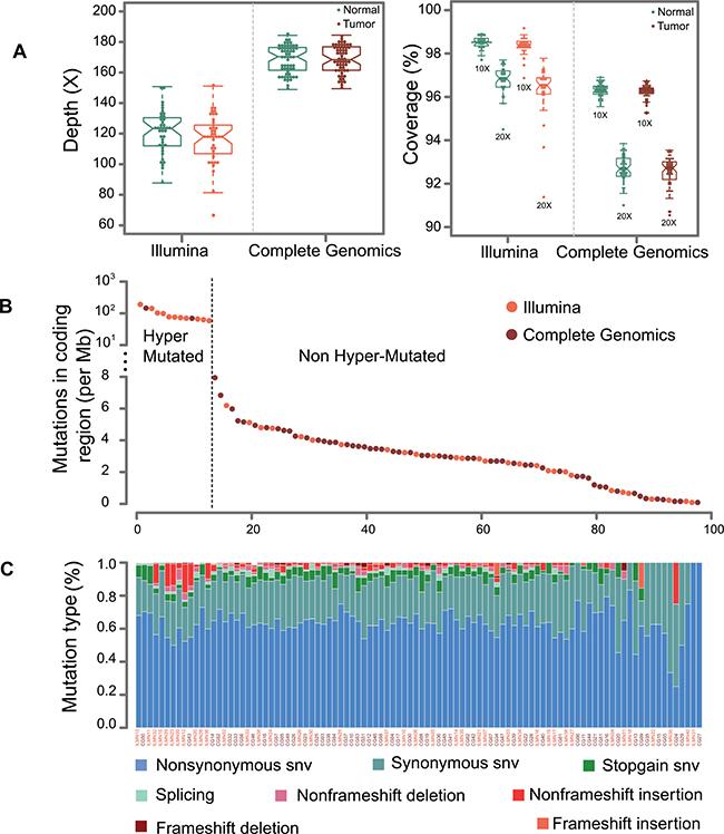 Sequencing statistics for Illumina and CG platforms.