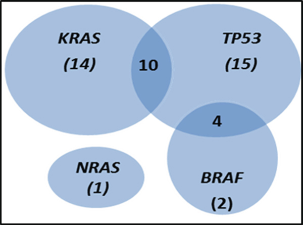 Venn diagram showing the distribution of KRAS, NRAS, TP53 and BRAF mutations in the 87 sporadic colorectal cancer (sCRC) patients analysed in this study.