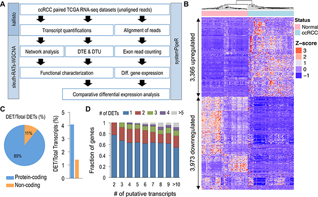 Global identification of differential transcript expression in ccRCC.
