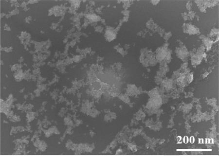 Surface electron microscopy (SEM) image of the AuNP-octadecylamine sensing film.