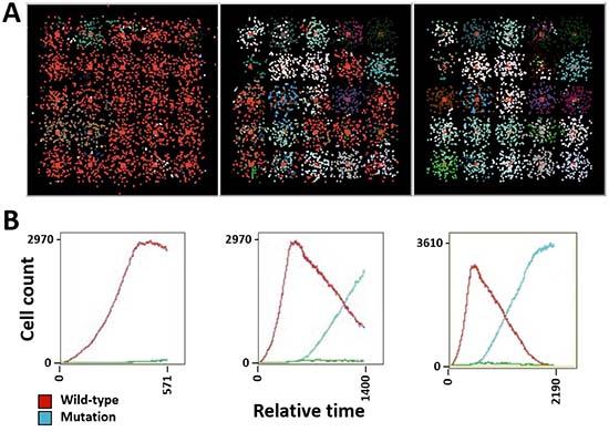 Simulation of tumor heterogeneity and tumor burden in SCLC.