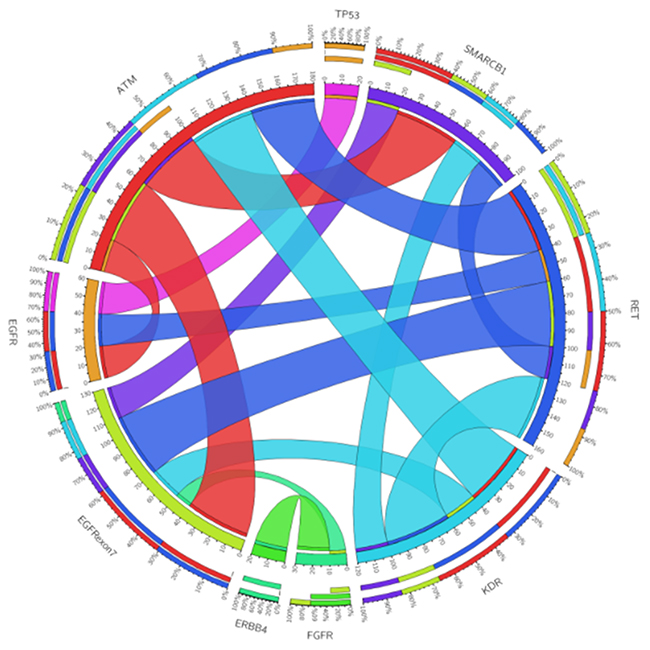 Circos plot of genomic alterations co-occurring in different genes.
