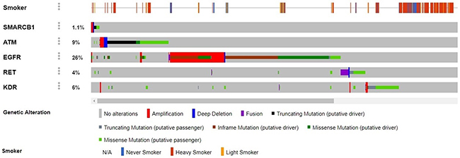 Contrast between genomic alterations in the genes SMARCB1, ATM, EGFR, RET and KDR vs. smoking history.