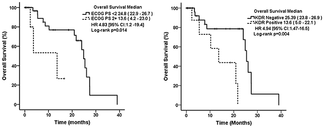 Kaplan–Meier curves for overall survival in lung adenocarcinoma patients associated with WSE according to their clinical and molecular characteristics.