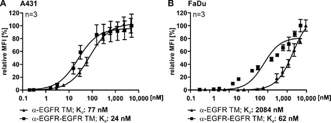 Comparison of the affinities of the mono- and bivalent EGFR-specific TMs.