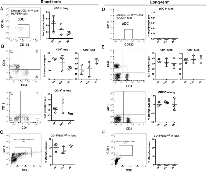 Retention of human immune cells in the blood and spleen of humanized mouse models.