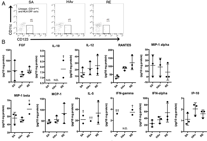 Human cytokine profiles of lung lysates from vaccine-inoculated humanized mice.