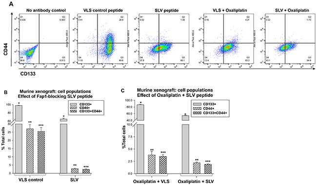 Fap1-inhibition decreases abundance of CD133+CD44+ cells in in a murine xenograft model of colon cancer with or without oxaliplatin.