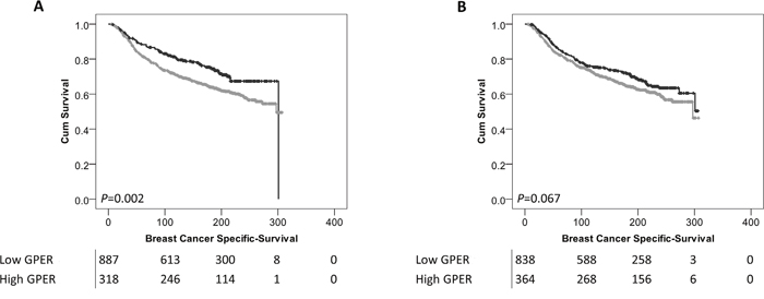 Kaplan-Meier analysis of breast cancer specific survival showing the impact of low (grey line) and high (black line) GPER protein expression