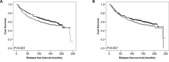 Kaplan-Meier analysis of relapse free survival showing the impact of low (grey line) and high (black line) GPER protein expression