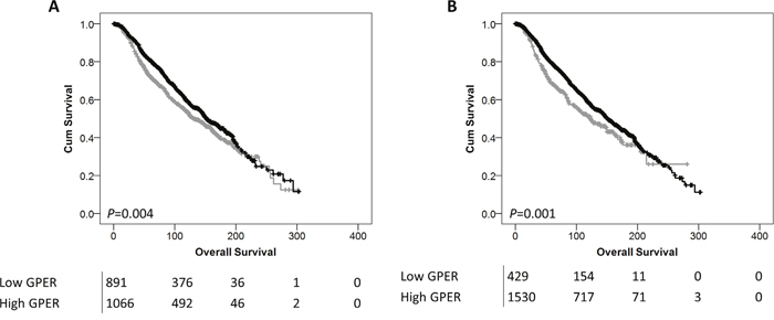 Kaplan-Meier analysis of overall survival showing the impact of low (grey line) and high (black line) GPER mRNA expression