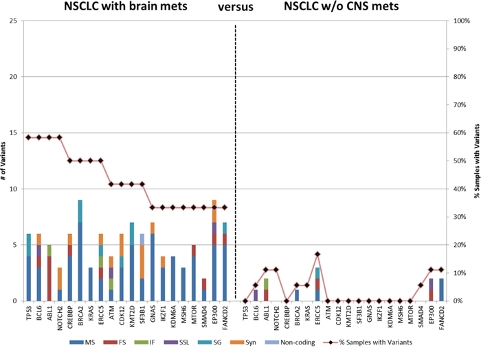 Genes containing variants in primary tumors of NSCLC patients with brain metastasis.