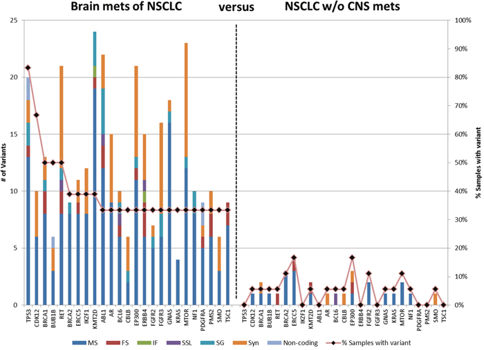 Genes containing variants in BMs of NSCLC patients.