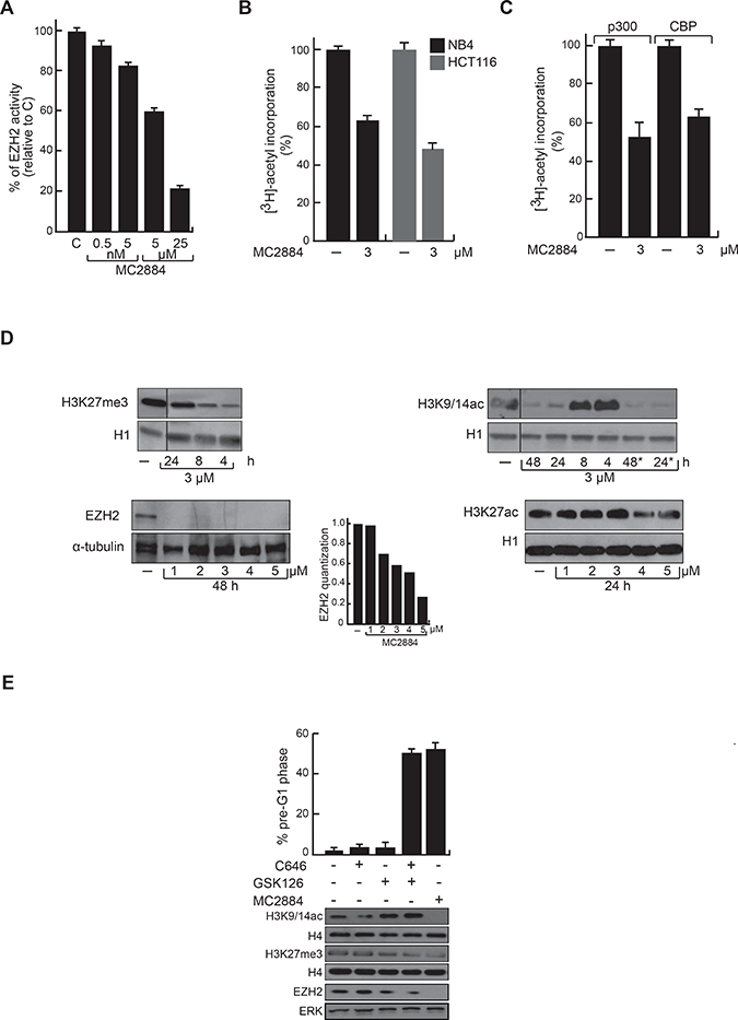 Chromatin modulating effects of MC2884 in vitro and in cancer cells.