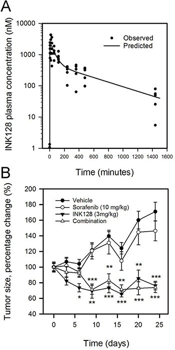 INK128 inhibits growth of SK-Hep1 xenografts in mice.