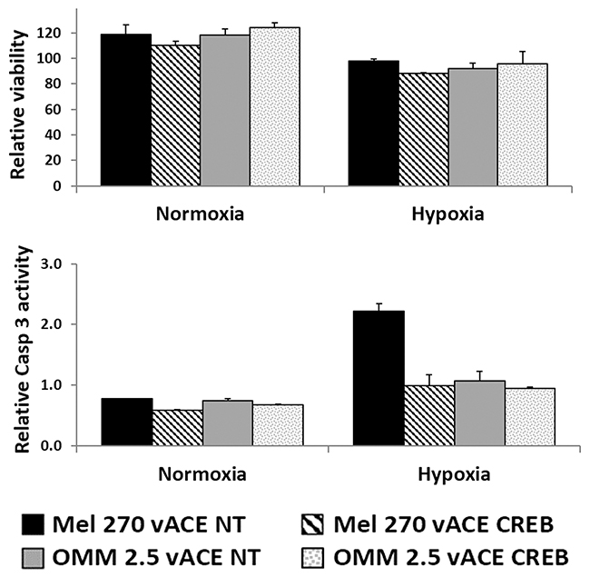 The effect of CREB on uveal melanoma's sensitivity to hypoxia.