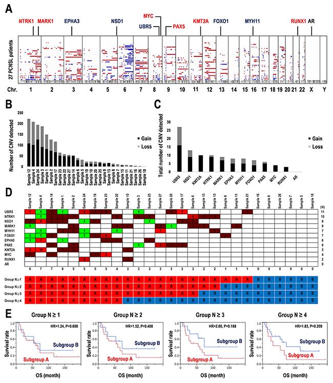 Copy number variations detected in 12 prognostic marker candidates in 27 PCNSL specimens.