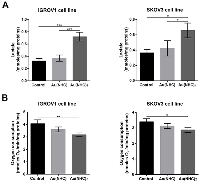 Influence of gold carbene complexes on cancer IGROV1 and SKOV3 cell metabolism.
