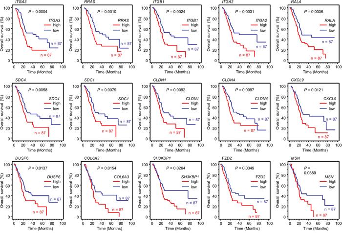 Kaplan-Meier analysis of miR-124-3p-regulated genes related to poor prognosis in PDAC.