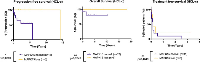 MAPK15 deletion improves the progression-free survival in HCL-c patients.