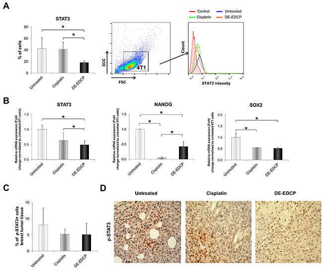DE-EDCP treatment downregulates expression of STAT3 in murine breast cancer.