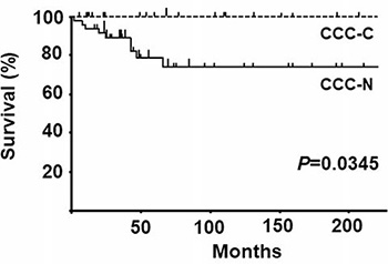 Overall survival curves for clear cell carcinoma with nuclear expression of MCM2 (CCC-N) and clear cell carcinoma with cytoplasmic/nuclear expression of MCM2 CCC-C cases.