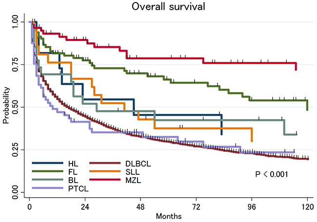 Overall survival of primary central nervous system lymphoma by histologic subtypes.