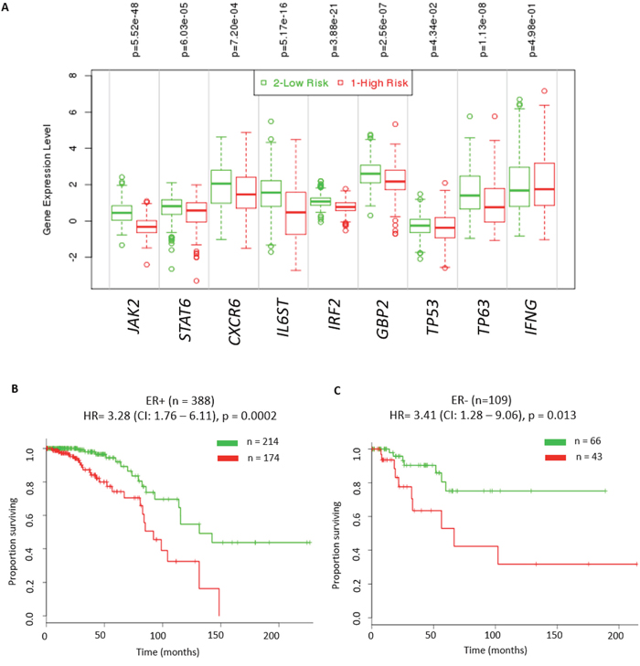 Significant prognostic value of IFN-γ mediated signalling in breast cancer patients.