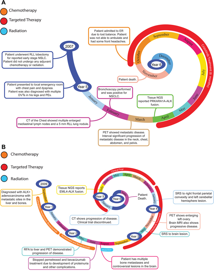 Representative timelines of patient treatment history.