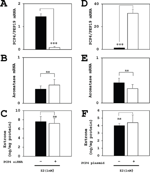 Effects of PCP4/PEP19 on aromatase expression for E1 production in MCF-7 cells under E2 stimulated condition.