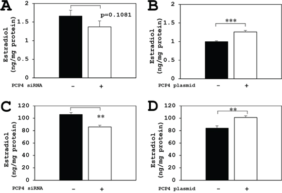 PCP4/PEP19 overexpression and knockdown effects on E2 production in SK-BR-3 cells.