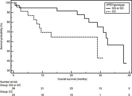 The probability of overall survival alteration depending on APEH genotype.