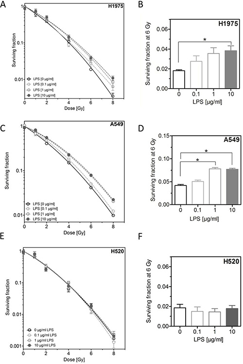 LPS induce radioresistance in H1975 and A549, but not in H520 cells.